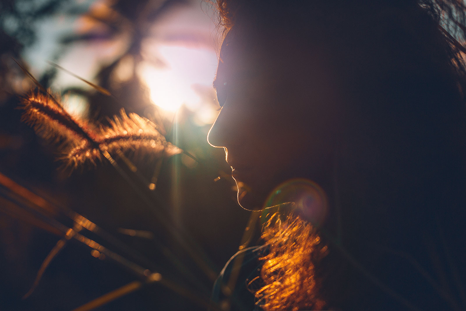 La via aurea delle emozioni