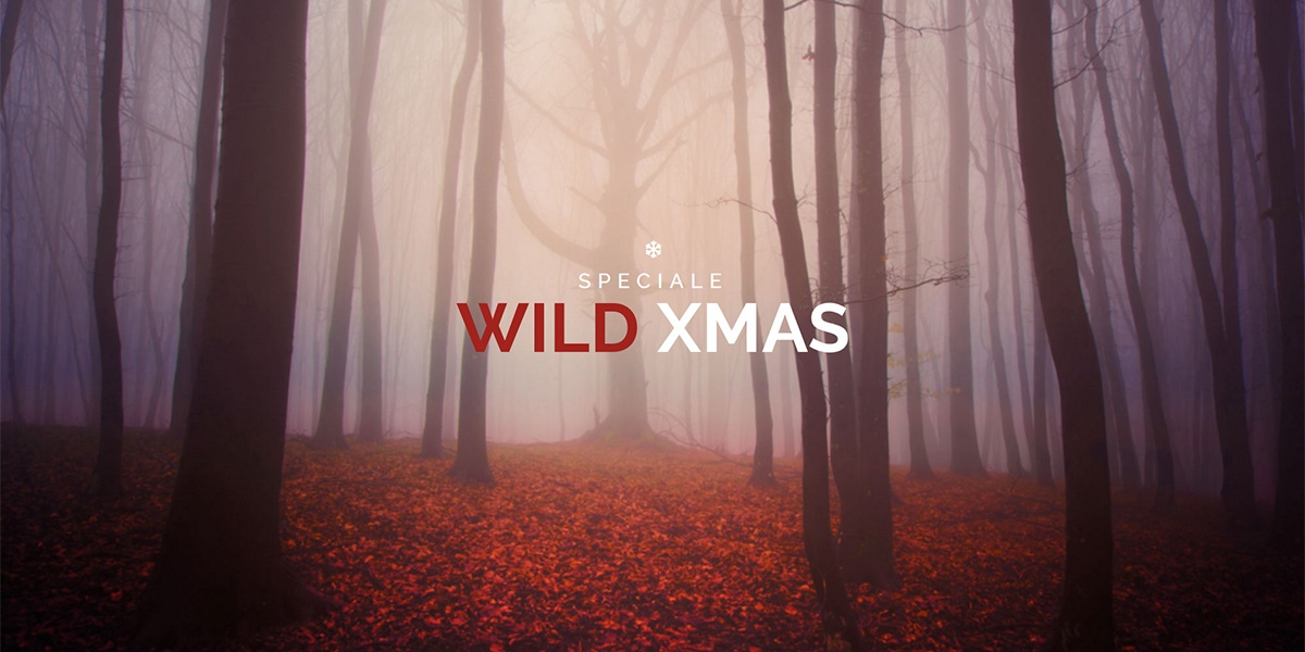 Speciale Wild Christmas
