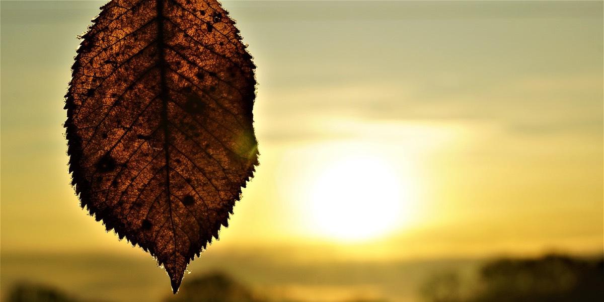 Respira oggi e basta