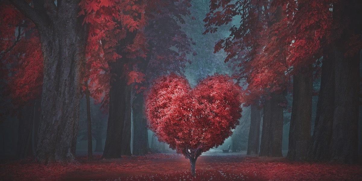 Riscrivere la propria storia d'amore è possibile, ecco come…